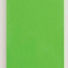 MA 10042 - FANCY GREEN